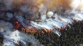 Wildfires cast light on the future of fire protection