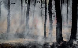 How fire protection plays a role in protecting the environment